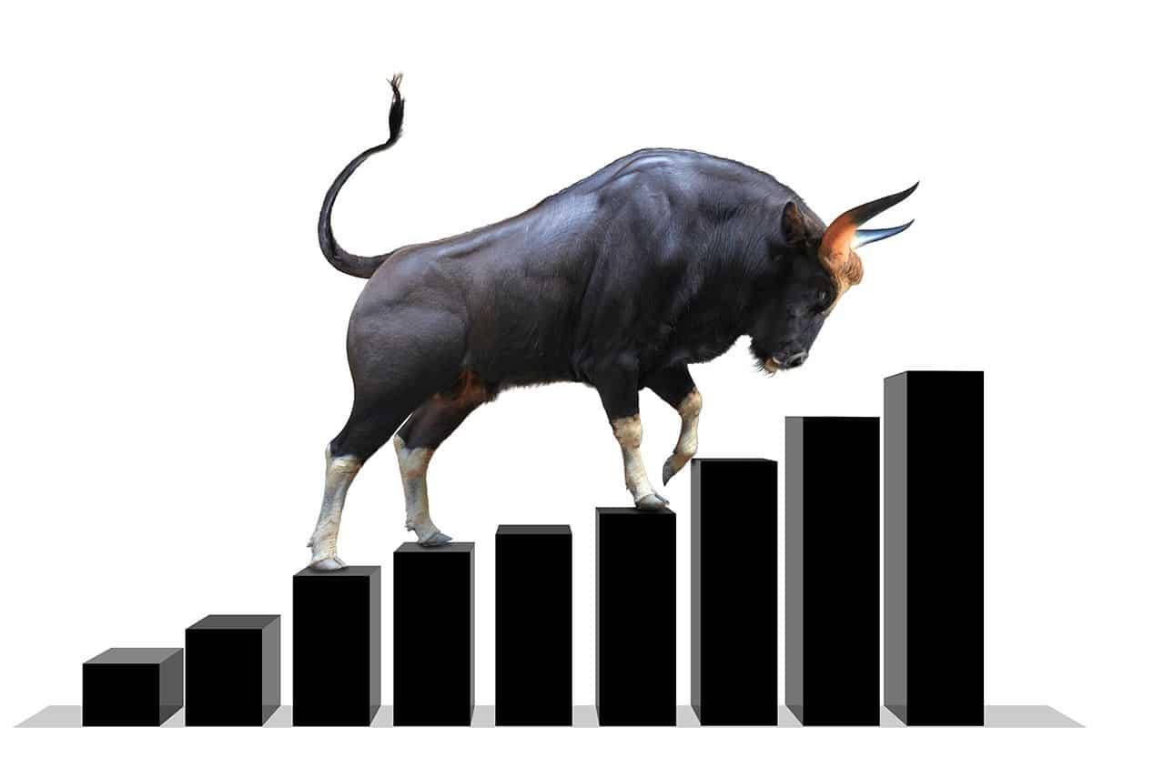 bull-market-2020