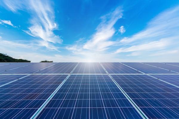 Investir ecologie