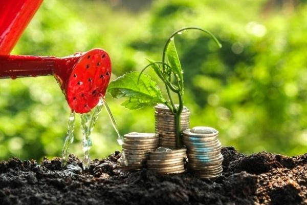 Comment devenir un investisseur