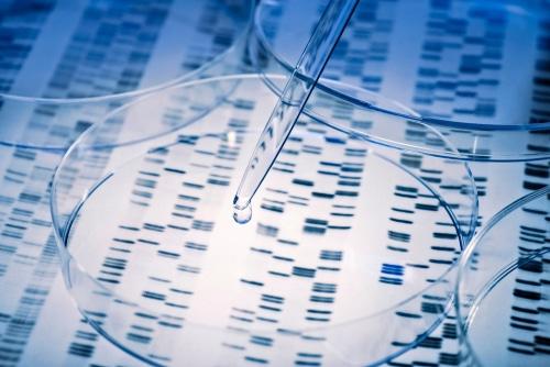 Le séquençage de génome s'est nettement amélioré en 20 ans