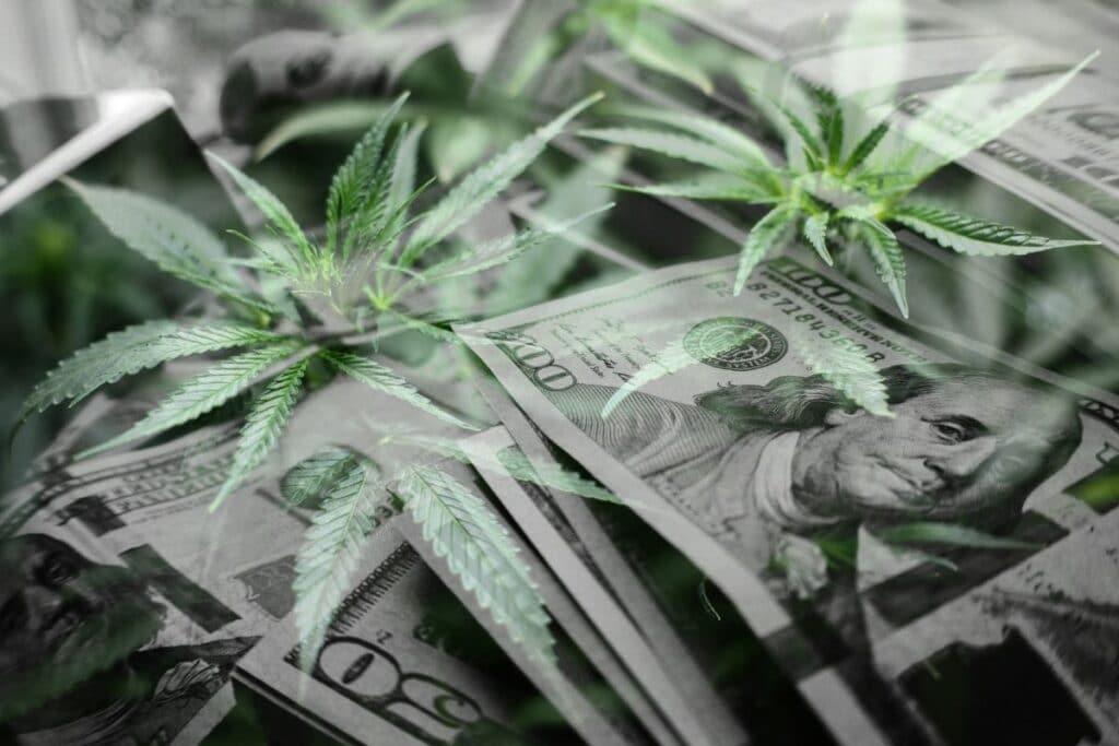 cannabis legal 2
