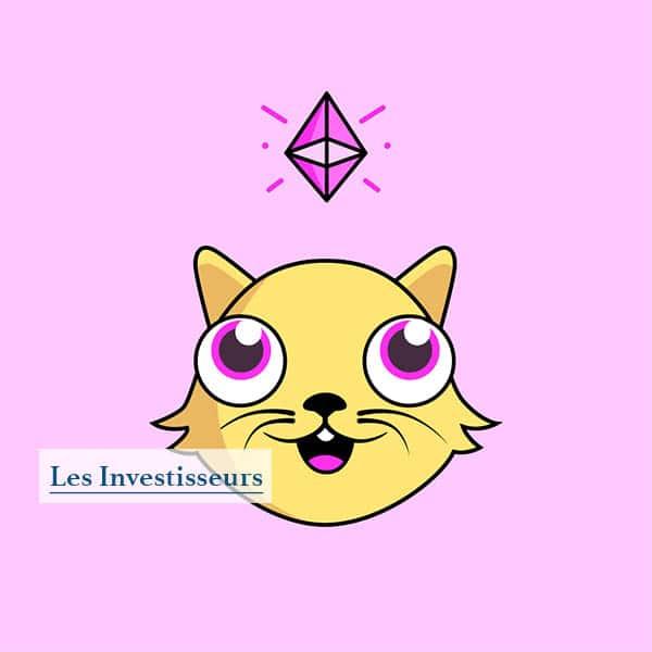 Un crypto-chat sur l'écosystème NFT