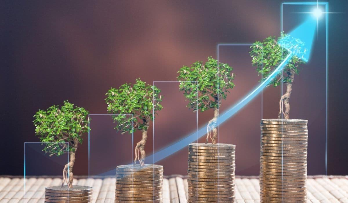 investir arbre pièces de monnaie